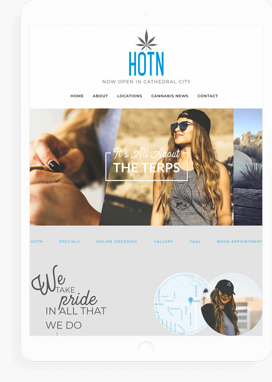 cannabis shop e-commerce website design